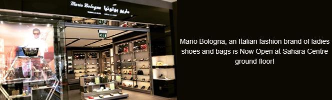 Sahara Centre welcomes Mario Bologna